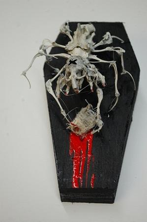 rat skeleton spider taxidermy mount articulation