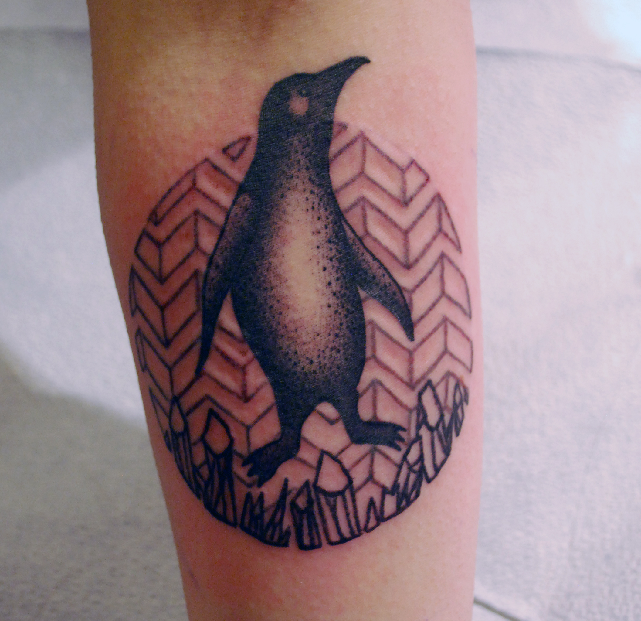 penguin done by Ludwig, at Under the Needle tattoo. IT IS ADORABLE. Background/geometry by me.