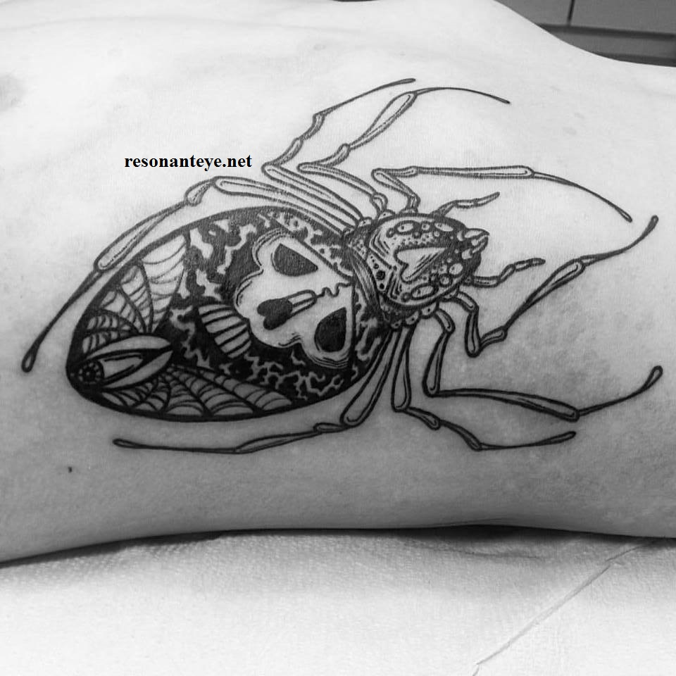 spider tattoo on ribcage
