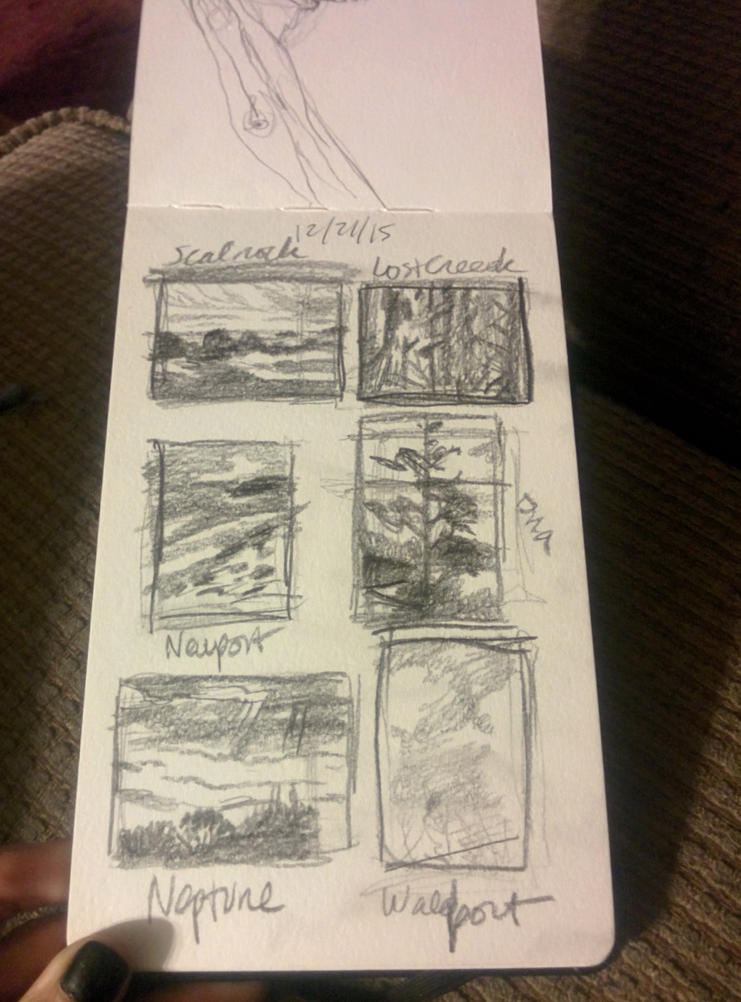 moleskin sketches of oregon forest