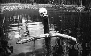 (Swamp Water)